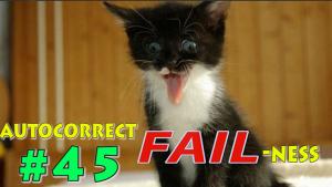 autocorrect-fail-ness-45-kitten