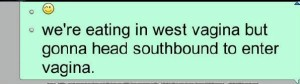southbound-vagina